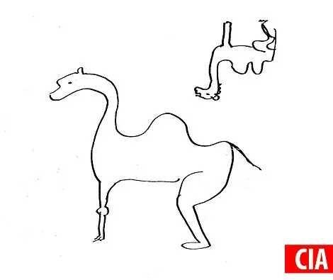 中情局专家画的骆驼
