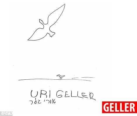 盖勒画的飞鸟